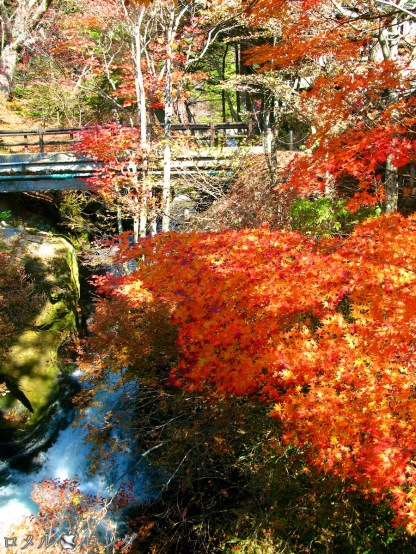 Ryuzu Falls 014
