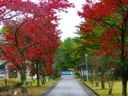 Karuizawa Seminar House 005