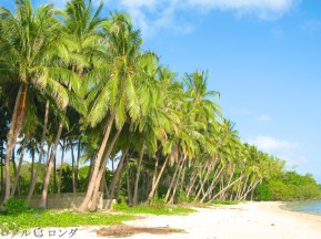 Coco Verde Beach 005
