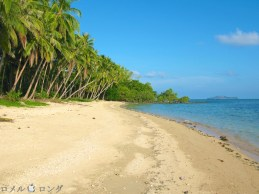 Coco Verde Beach 016