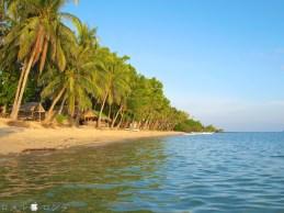 Coco Verde Beach 023