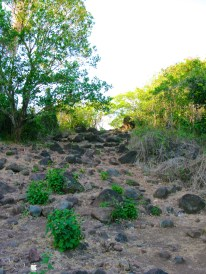 Mt. Aguado 032