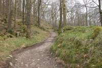 Path-s