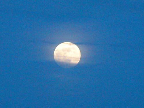 moon-s