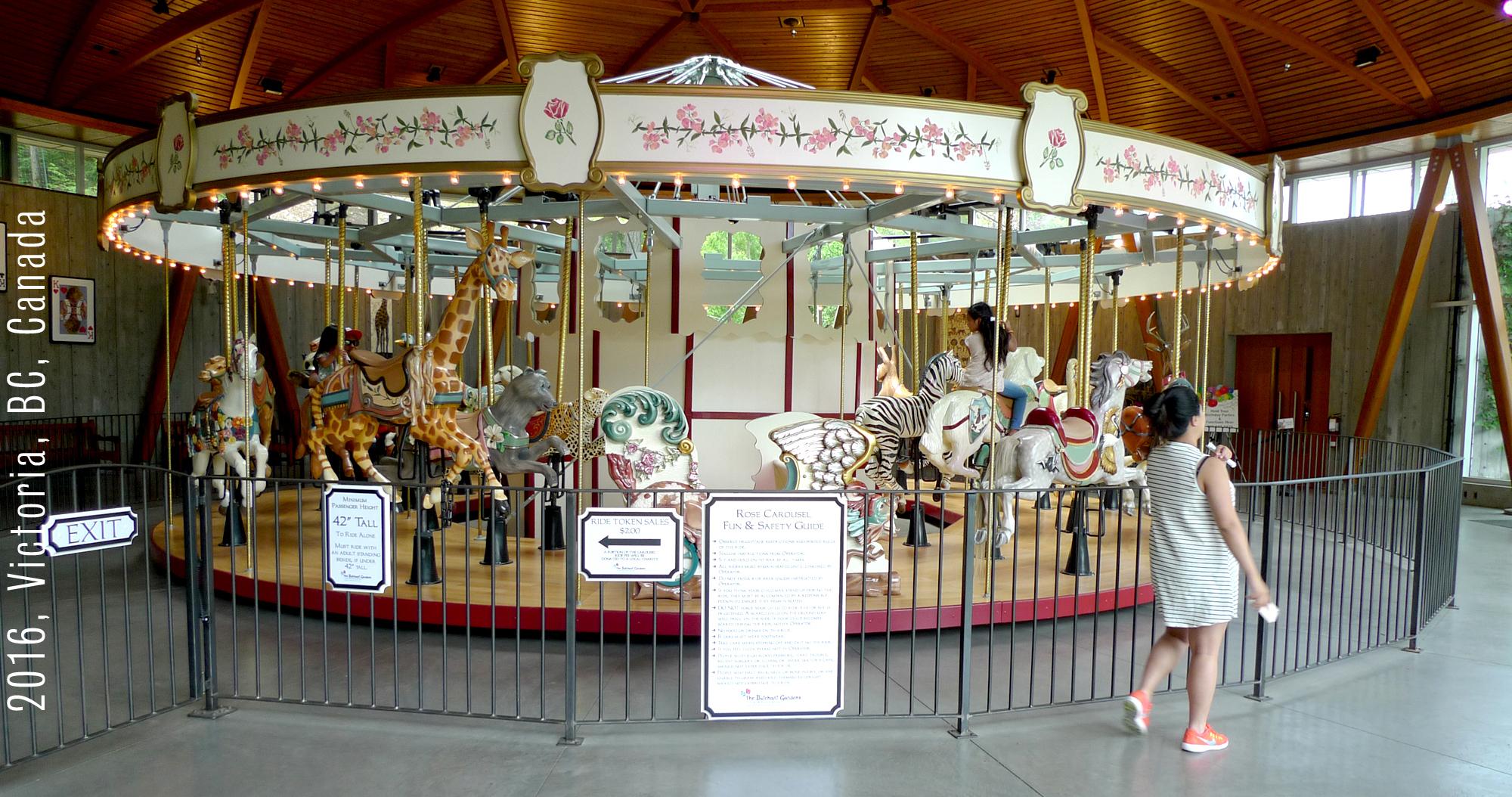 carousel26
