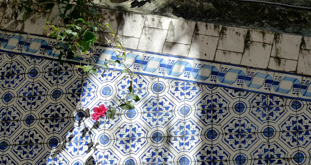azulejos020