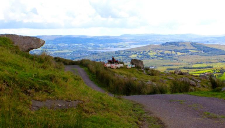 Gunnar-Scholer-Pax-OK-Spirit-of-IrelandHigh-Altitude-Sheep-herding-in-Ireland-saadj