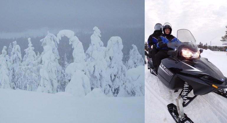 snow-trees-snowmobile