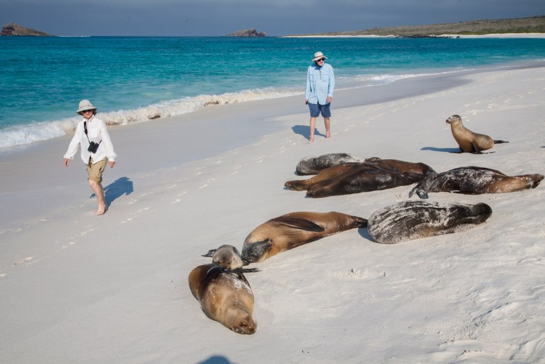 Top Five Reasons to Visit the Galápagos