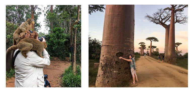 people in Madagascar baobab lemur