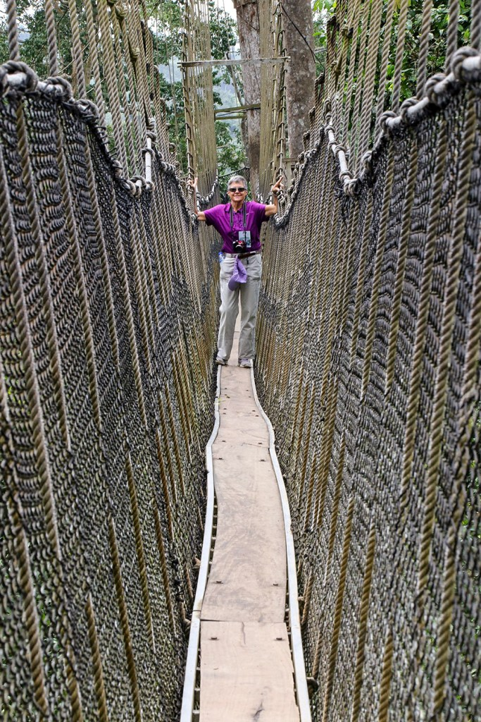 walking on a canopy bridge in Kakum national park, Ghana