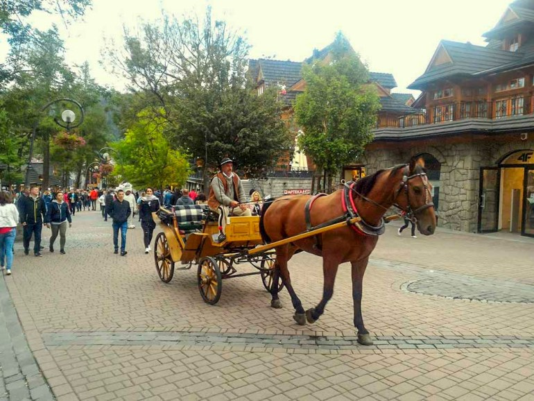 zakopane poland horse carriage