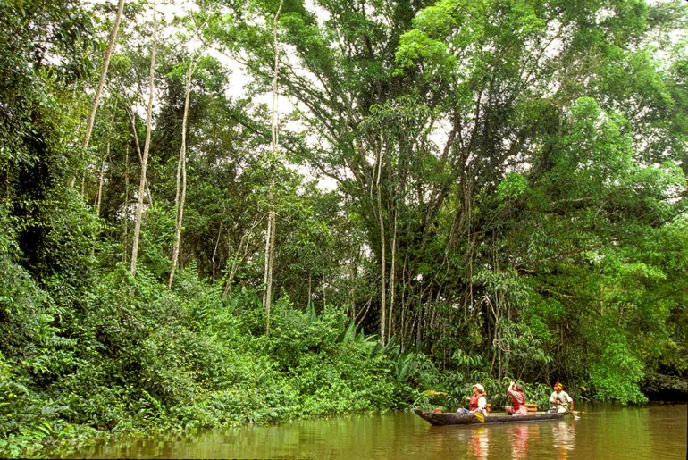 The Amazon and Canoe, Peru