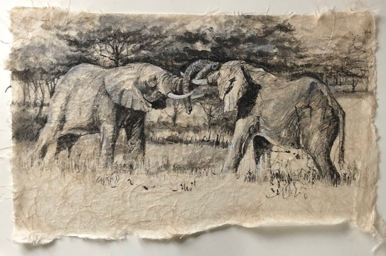 Ink drawing on rice paper of elephants sparring