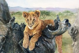 Watercolor of lion cub in tree