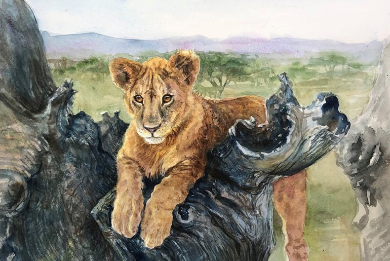 Safari Inspirations, Captured on Canvas
