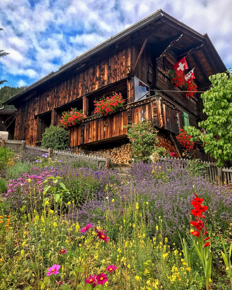 flowers and hotel in via alpina Switzerland