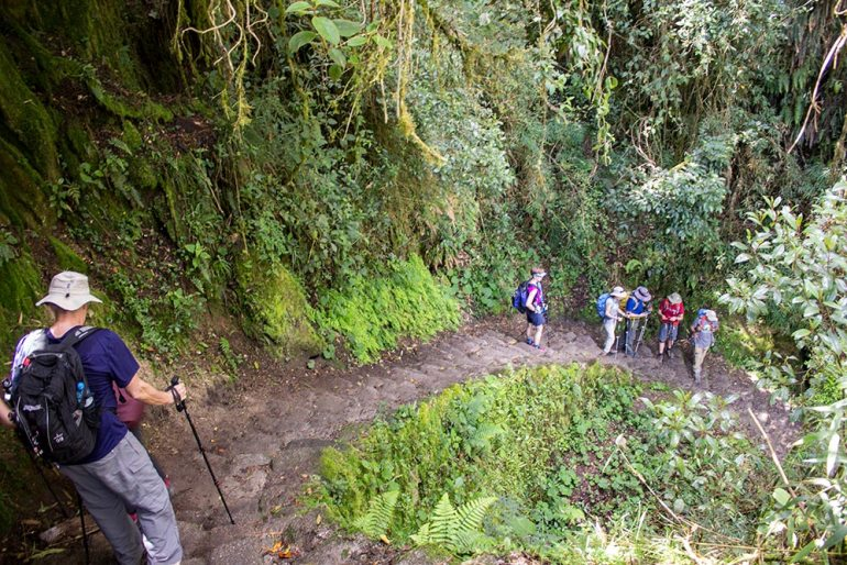 hiking down on the Inca Trail
