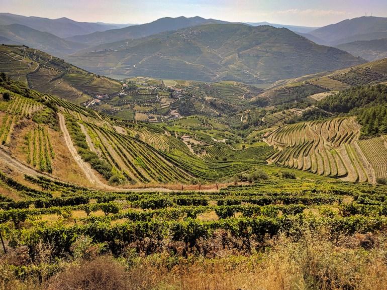 valley vineyards in portugal