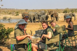 safari in zimbabwe