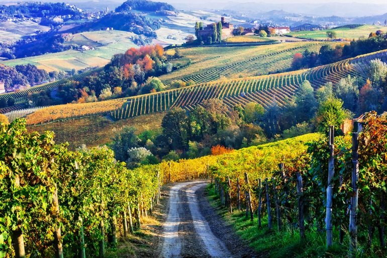 Wine-growing Regions that are Ripe for Adventure