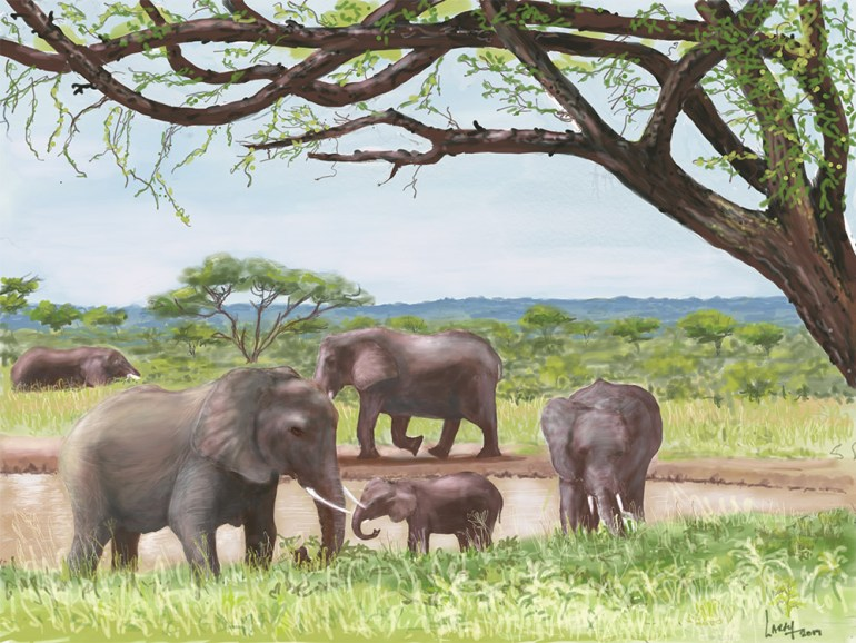 Tanzania artwork safari sketch of elephants