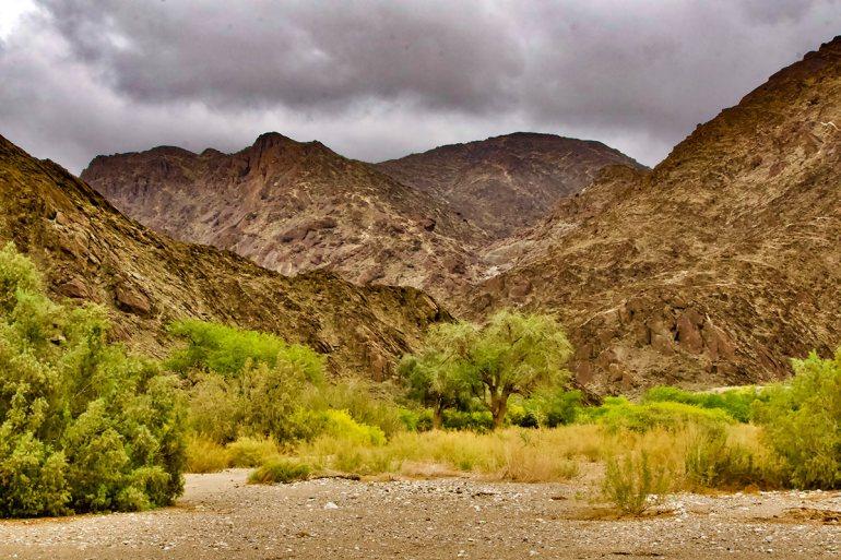 Namibia green season landscape