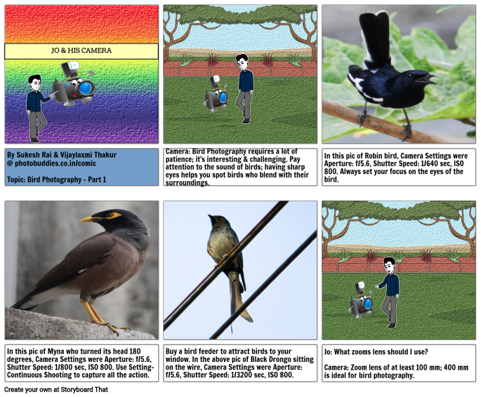 Camera Settings for Bird Photography