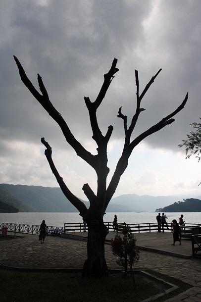 nature photography Meghalaya