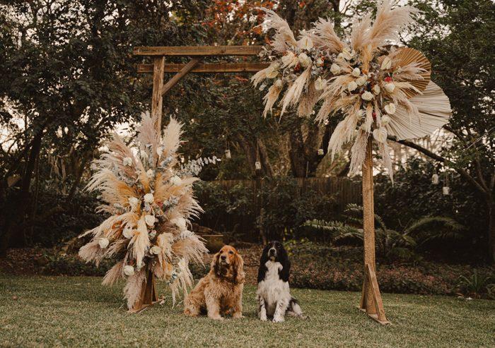 puppies sitting beneath wedding ceremony backdrop