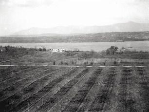 Dr Hugh Henry's house aerial views Cheviot 1947 (3)