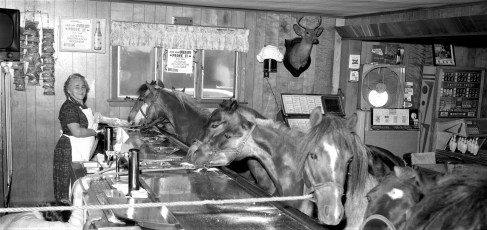 Al & Lena's Ridgewood Inn horses in the bar Bells Pond 1966 (2)