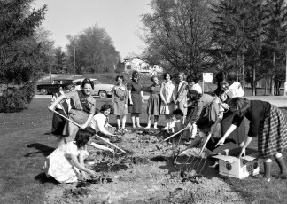 G'town Girl Scouts planting rose bushes at GCS 1963