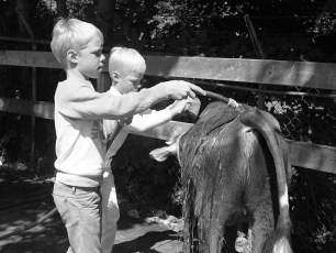 4-H moments at the Columbia County Fair 1976 (12)
