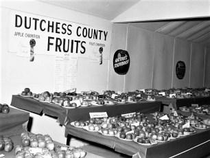 Dutchess County Fair 1968 (1)
