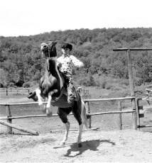 White Stallion Ranch Hillsdale 1964 (3)