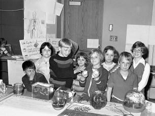 John L. Edwards School Science Fair Hudson 1978