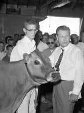 Governor Rockefeller visits the Columbia Cty. Fair 1962 (6)