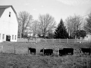 Gene-Sarazen-Farm-Gtown-1949