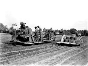 Burton Fraleigh Farm Potato Harvest Clermont 1959 (1)