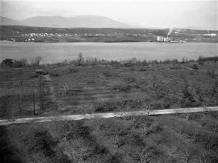 Don Weber views of G'town 1947 (3)