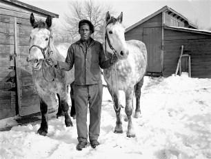 Lasher Farm man leading horses G'town 1947 (2)
