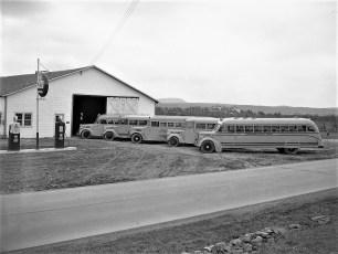 Jay Moore's school bus fleet Rt 9G G'town 1950