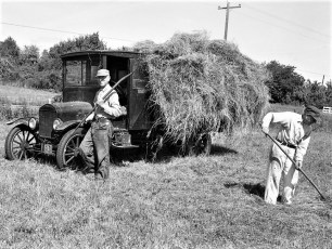Floyd Ford haying with his 1922 Ford truck G'town 1969 (1)