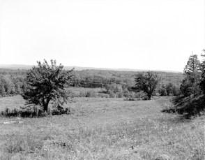 Tom Thumb Development Irving Price Blue Hill Rd. Greenport 1964 (2)