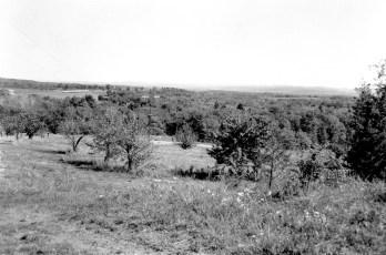Tom Thumb Development Irving Price Blue Hill Rd. Greenport 1964 (3)
