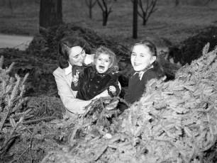 Ben Bartolotta Xmas Trees 1953 (6)