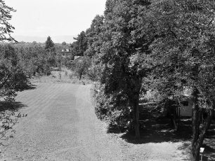 Camp Delbar Linlithgo 1952 (3)