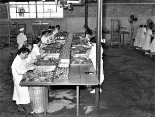 Orchard Hill Farm The Pie Factory Red Hook 1959 (8)