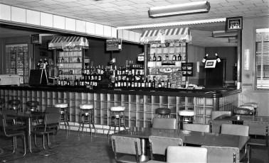 Spring Lake Lodge Red Hook 1956 (2)